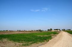 Village with houses surrounded by farmland near Mirpurkhas Sindh Pakistan. Mirpurkhas, Pakistan - January 19, 2017: A small village consisting mainly of farm stock photography
