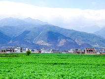 Village houses in Yunnan Royalty Free Stock Photos