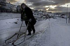 Village at the hurtigruten trip Norway Royalty Free Stock Photography