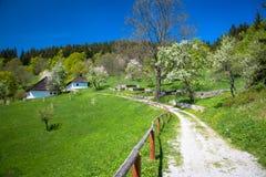 Village Kaliste, Slovakia Royalty Free Stock Photography