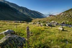 Village of Kavrun plateau or tableland in Kackar Mountains. Or simply Kackars in Camlihemsin, Rize, Turkey Stock Photos