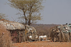 Village  in Kenya Stock Photography