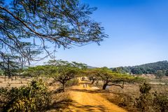 A village in Keonjhar district, Odisha Royalty Free Stock Photography