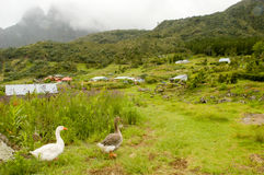 The village of La Nouvelle on cirque of Mafate. In La Reunion island, France Royalty Free Stock Photo