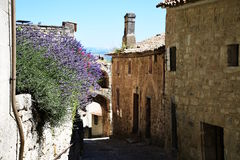 Village of Lacoste. Provence. France Stock Photos