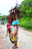 A village lady carrying firewood Royalty Free Stock Image