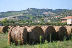 Village landscape with hay Stock Photos