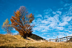 Village landscape in Romania royalty free stock images