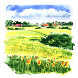 Village landscape with sunflower field and country houses, watercolor illustration. Village landscape with sunflower field and country houses under cloudy sky Stock Photography