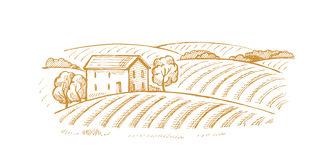 Village and landscape. Vector hand drawn image of village and landscape Royalty Free Stock Image
