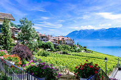 Village by the Lavaux Vineyards. Stock Photo