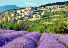 Village and Lavender Field Royalty Free Stock Photography