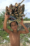 Village Life, Brazilian boy lugging firewood Royalty Free Stock Image