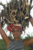 Village Life, Brazilian woman lugging firewood Stock Photos