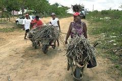 Village Life, Brazilian women transporting firewood Royalty Free Stock Image