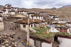 Village life, Spiti, Tibetan, himachal. Traditional Tibetan houses in a Village in Spiti valley, Himachal Pradesh. This area will be covered in snow for most stock photos