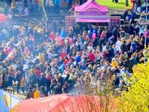 Village Limerick de Riverfest Image stock