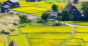 Village located in Gifu Prefecture, Japan. Known for being the site of Shirakawa-go, traditional famous village.  Royalty Free Stock Photo