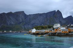 Village in Lofoten Stock Image