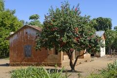 Village in Madagascar Stock Image
