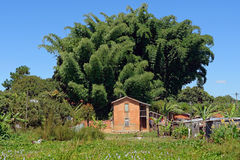 Village in Madagascar Royalty Free Stock Photography