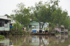 Village at Mekong River, Vietnam Stock Photos