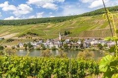 Village Merl sur le paysage de rivière de la Moselle photos libres de droits