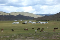 Village in Mongolia Stock Image