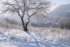 Village montagneux de l'hiver Photographie stock