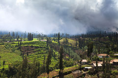 Village in Mount Bromo volcanoes taken in Tengger Caldera, East Royalty Free Stock Photography