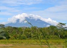 Village. Mount Dempo at Pagaralam Sumatera stock photo