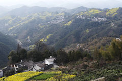 Village in the mountains, the yellow rape and winding mountain path Royalty Free Stock Images