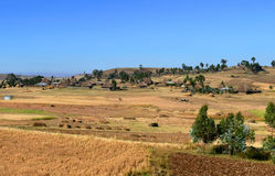 Village on the nature background. Africa, Ethiopia. Stock Photography