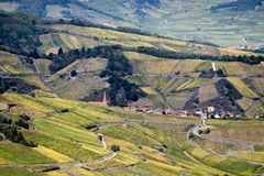 Village nested in vineyards. Village of Niedermorschwihr, nested in the vineyards on the Alsace wine trail road stock photography