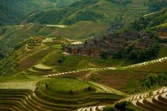 Village noyé montant en cascade Longji de terrasses de riz Photographie stock