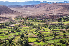 Village and Oasis. In Ait Benhaddou Stock Images