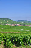 Village Oger,Champagne,France Royalty Free Stock Photos