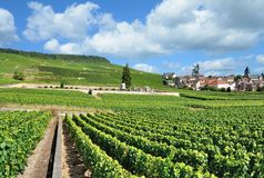 Village of Oger,Champagne region,Epernay,France Royalty Free Stock Image