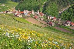 Village Stock Image