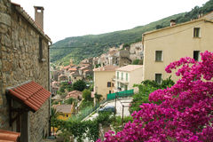 The village of Olmeto on the island of Corsica Royalty Free Stock Photography