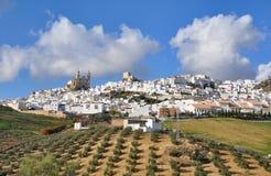 Village of Olvera Royalty Free Stock Photo