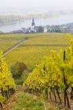 Village of Oppenheim. Rheingau, Germany stock image