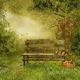 Village orchard. Old wooden bench in a village orchard Royalty Free Stock Photos
