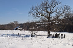 Village outskirts on winter sunny day Royalty Free Stock Images