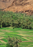Village and palm grove among Moroccan hills Stock Photography