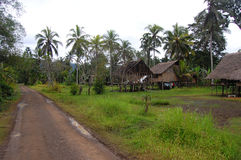 Village in Papua New Guinea. Small village in outback of Papua New Guinea Royalty Free Stock Photo