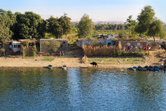 Village pauvre sur Nile River, Egypte photos libres de droits