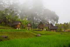 Village Stock Photos