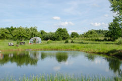 Village pond greenhouse in summer Stock Photo