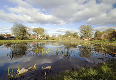 Village pond scenic Stock Image
